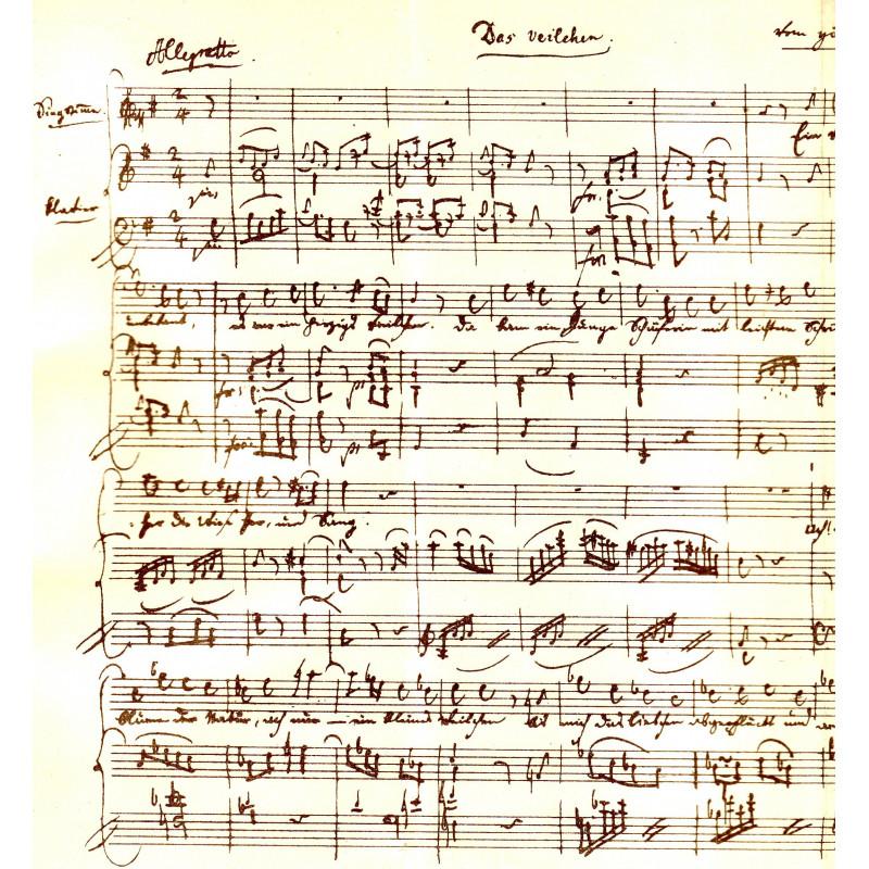 W. A. Mozart I